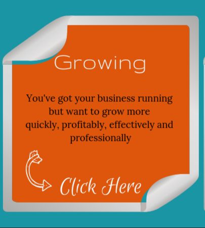 Growing Your Business, Business Blast Off Programme, Consultancy and Coaching