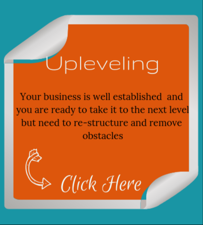 Upleveling Your Business, Business Re-Structure Programme, Consultancy and Coaching