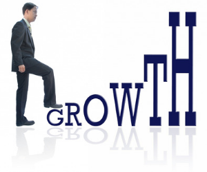 Business Growth Resources, Planet Peacock Library, Consultancy and coaching